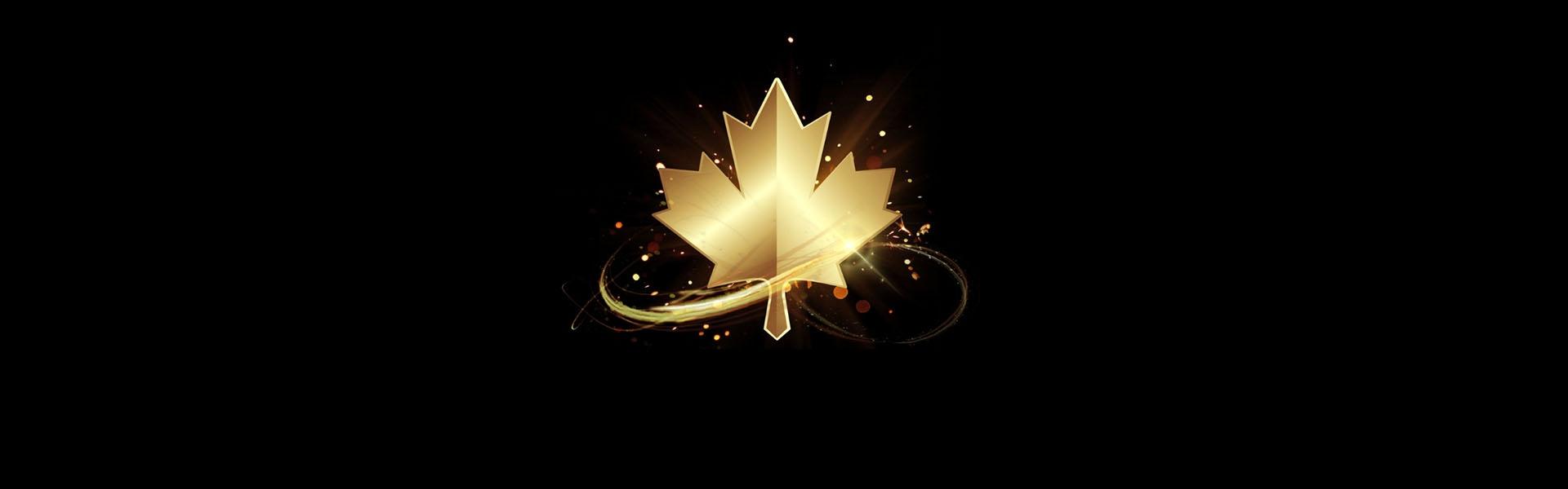 Cérémonie d'ouverture du Festival de la télévision Chine-Canada  2019