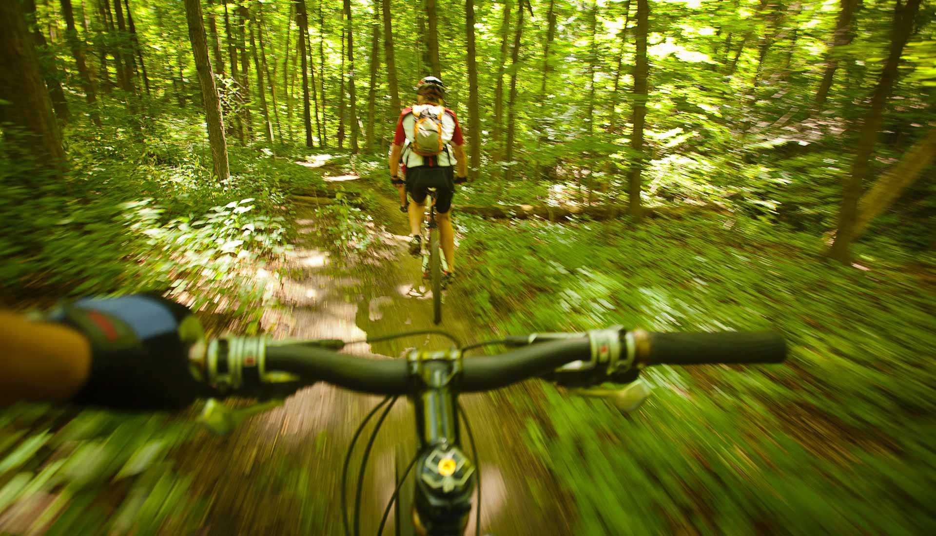 Cycling at Long Point