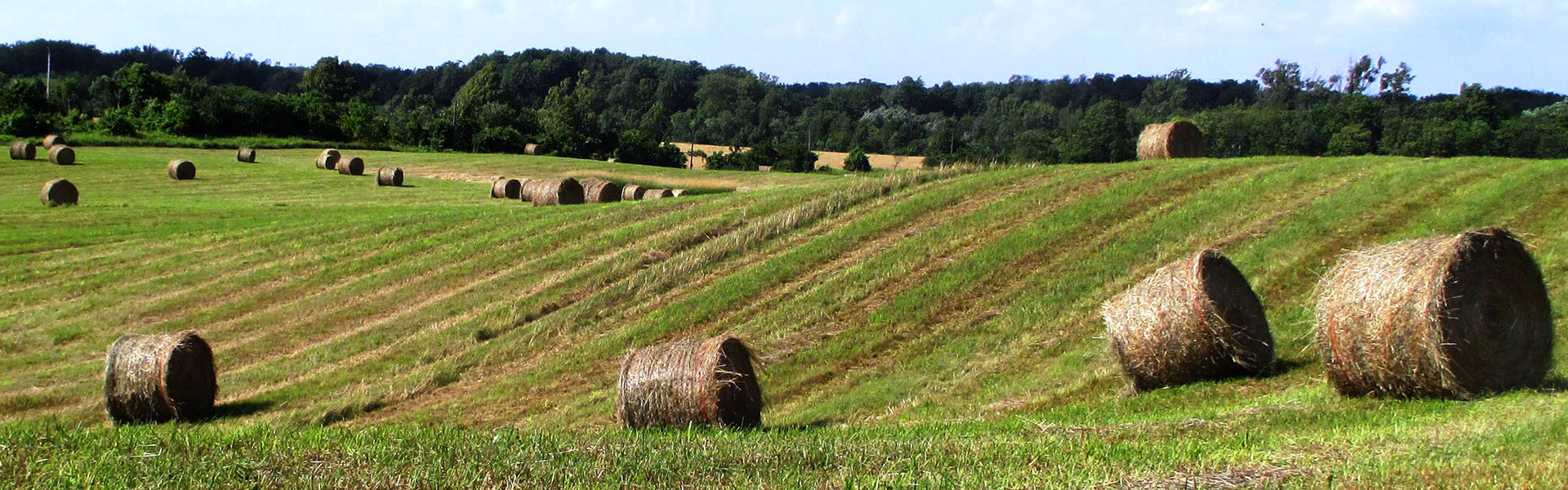 Scotsdale Farm, Halton Hills