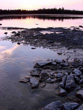 Clarke Property shoreline
