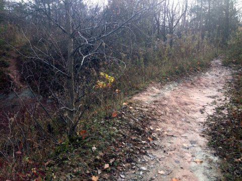 Badlands Btc Rogue Trail