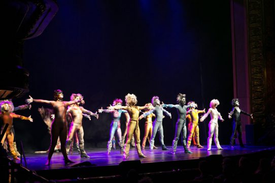 Cats 2013 revival production