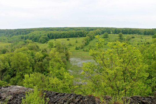 Poste d'observation à l'est de la propriété C. Thompson surplombant la zone humide