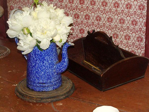 Fleurs au maison-musée de la famille Rose