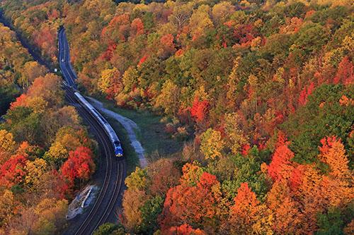 Vue aérienne d'un train qui traverse les arbres d'automne