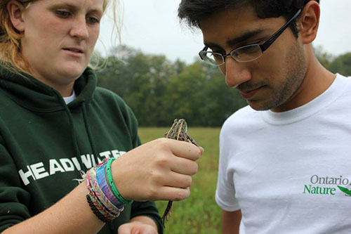 Muhammad Qureshi with a friend holding a frog