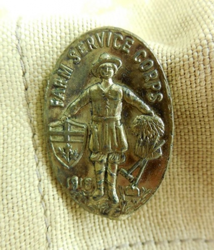 Farm Service Corps badge