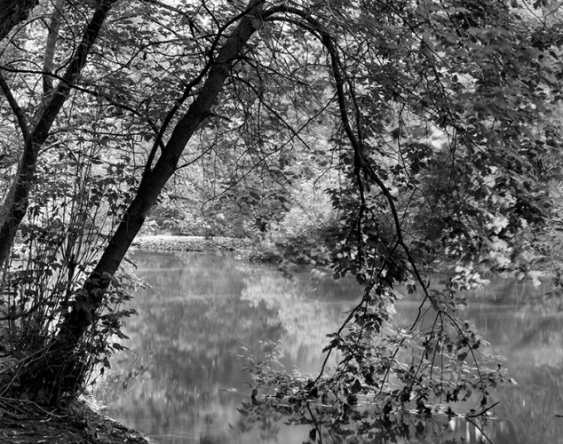 Beechville, Ontario (automne 2000)